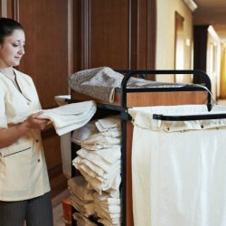 housekeeper-near-cart-644x430